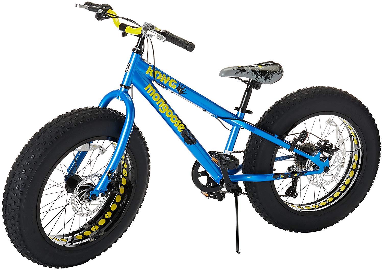 Best Fat Bike Under 2000 2